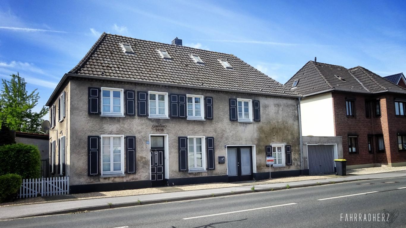 100-Jahre-Beuys-13