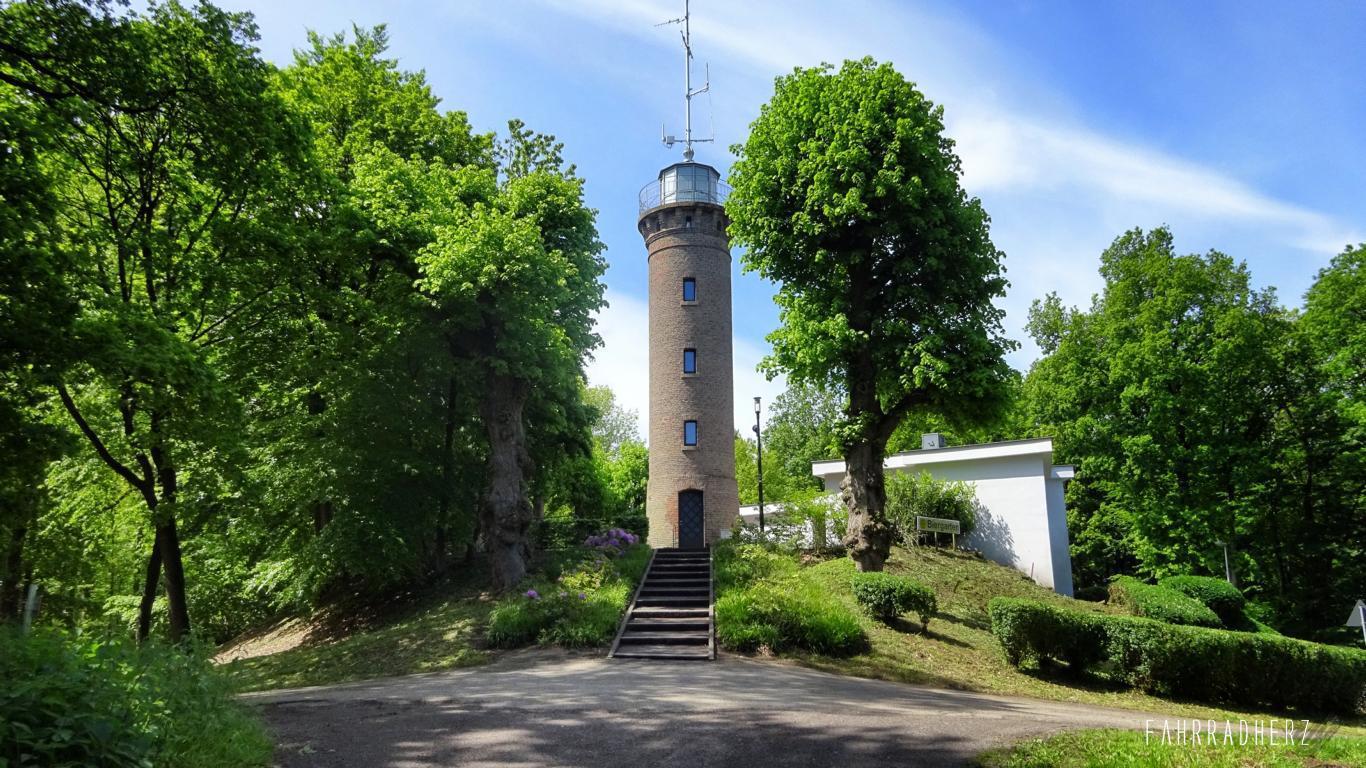100-Jahre-Beuys-24