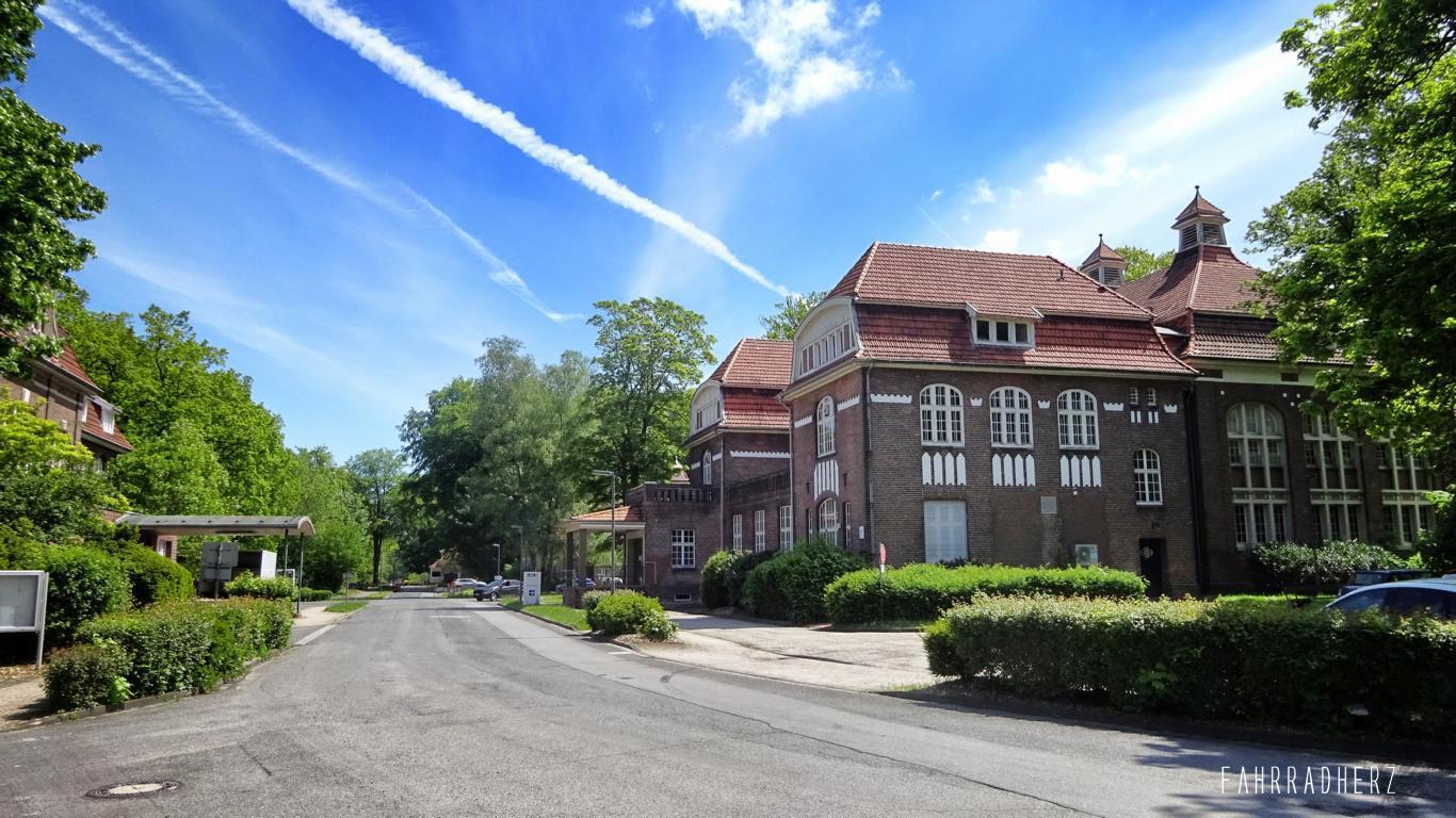 100-Jahre-Beuys-31
