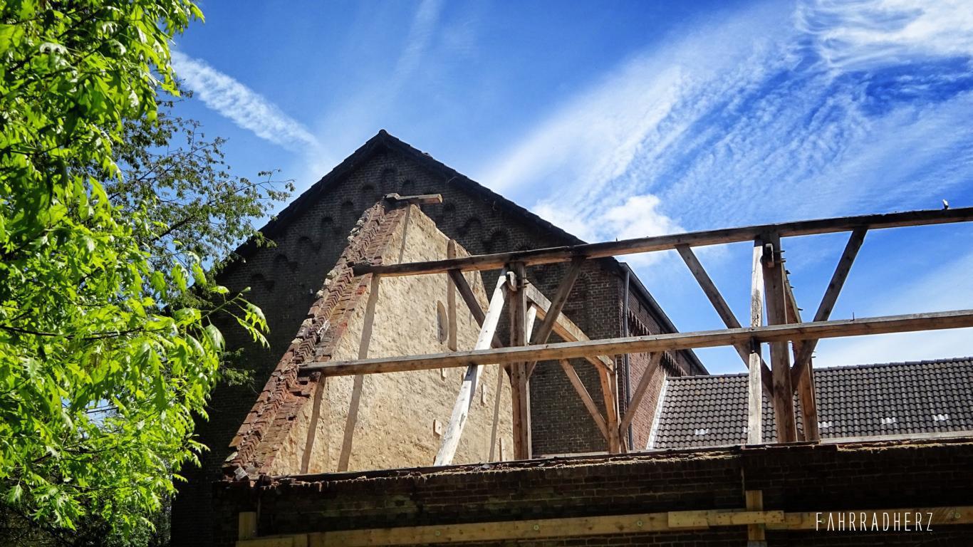 100-Jahre-Beuys-34