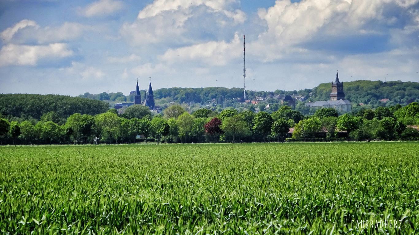 100-Jahre-Beuys-46