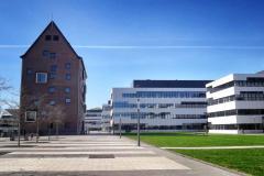 100-Jahre-Beuys-1