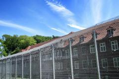 100-Jahre-Beuys-32