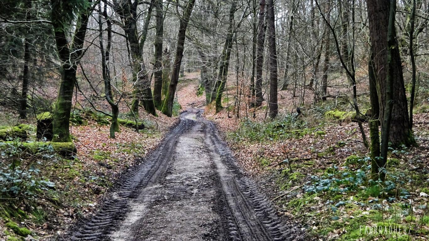 Radpilgerwege-Etappe-2-12