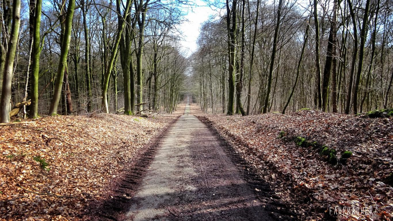 Radpilgerwege-Etappe-2-25