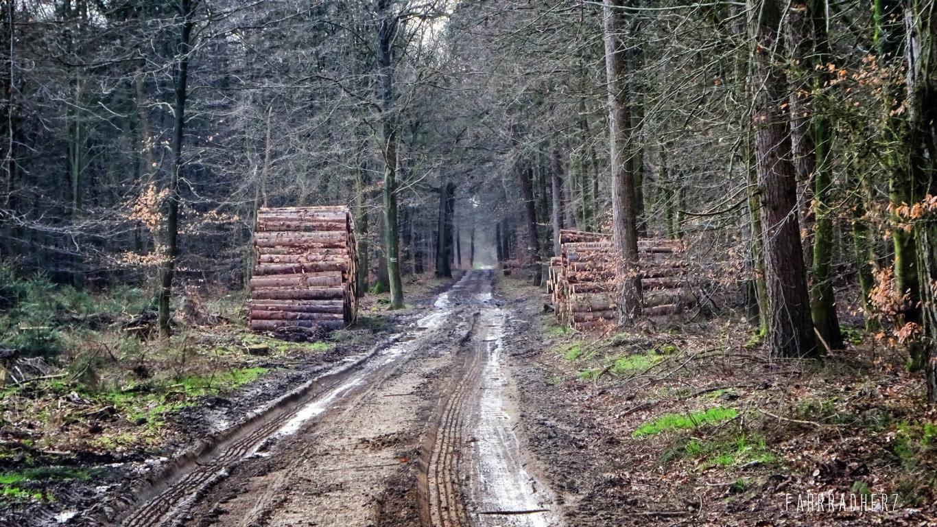 Radpilgerwege-Etappe-2-32