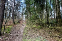 Radpilgerwege-Etappe-2-13