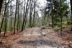 Radpilgerwege-Etappe-2-15