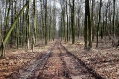 Radpilgerwege-Etappe-2-18