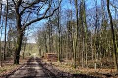 Radpilgerwege-Etappe-2-21