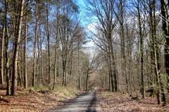 Radpilgerwege-Etappe-2-22