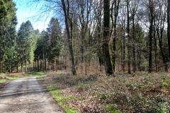 Radpilgerwege-Etappe-2-23