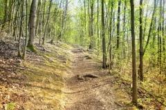 Werwolf - Wanderweg